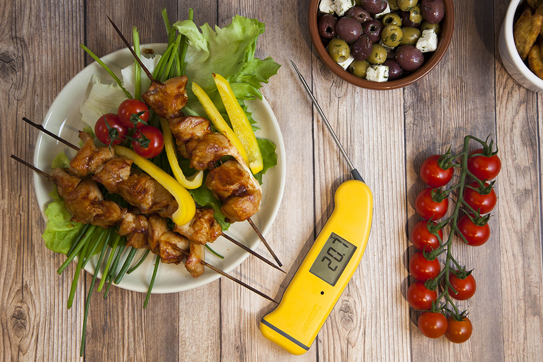 thermometer temperature monitoring food